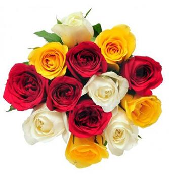 2687 Buquê rosas coloridas