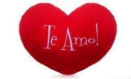 1259 Almofada Coração P