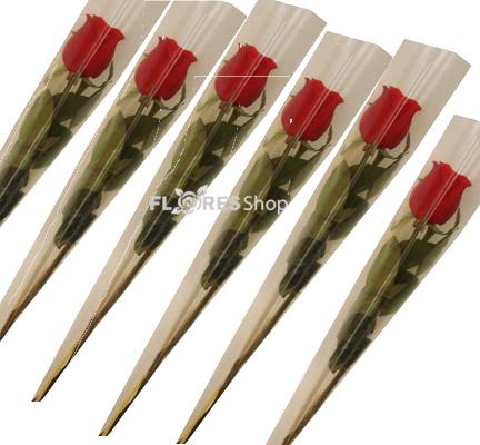 1687 Rosas individuais embaladas para presente.