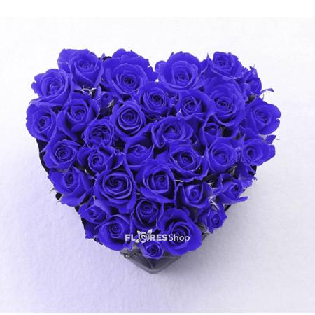 1724 ♡ Coração Rosas Azuis ♡