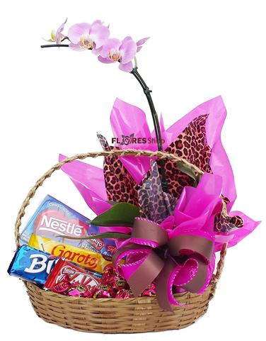2061 Cesta doce orquidea