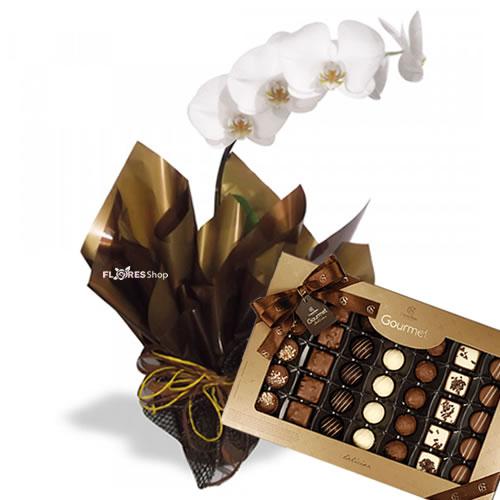 2396 Orquídea Gourmet