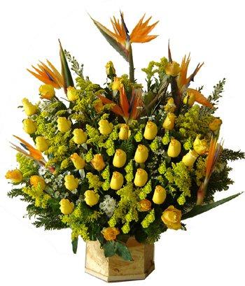 394 Encanto de Flores