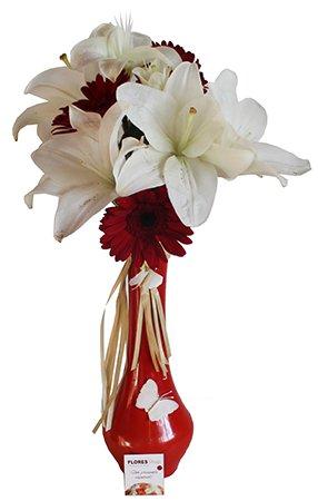 590 Delicadas Flores