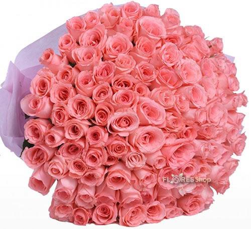 626 100 Rosas cor de Rosas