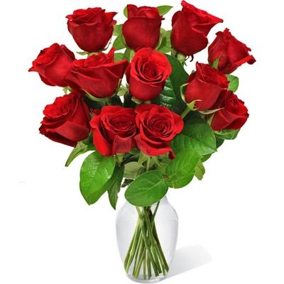 66 12 Rosas Vermelhas no Vaso
