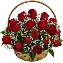 536 Cesta de 24 Rosas Vermelhas