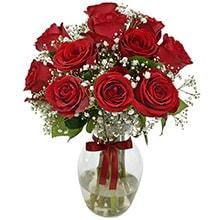 686 Luxo de Rosas Vermelhas no Vaso