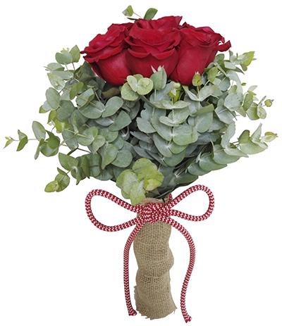 1643 Buquê de 06 Rosas Vermelhas Importadas
