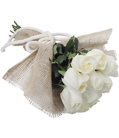 1842 Buquê de 12 Rosas Brancas
