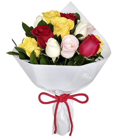 2507 Buquê de 12 Rosas Coloridas envoltas em Celofane Branco