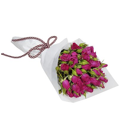 2604 Buquê de Mini Rosas Pinks em Celofane Branco
