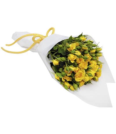 2605 Buquê de Mini Rosas Amarelas em Celofane Branco