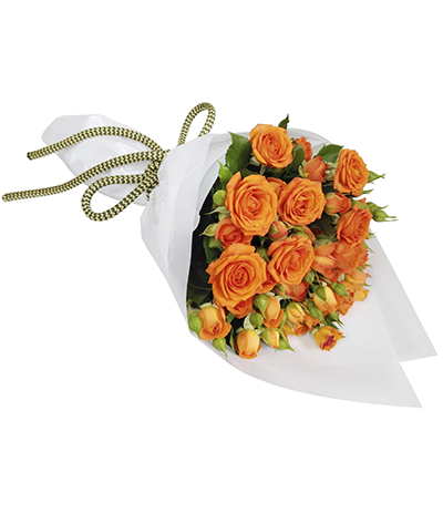2619 Buquê de Mini Rosas Cor de Laranja em Celofane Branco