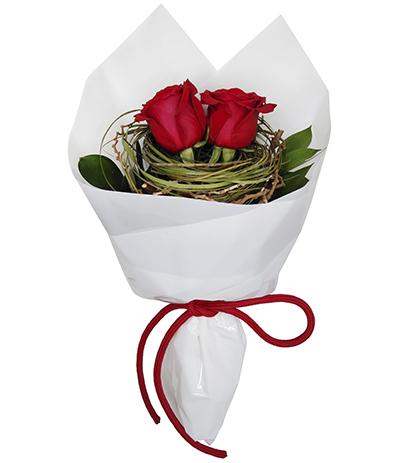 2668 Buquê de 02 Rosas Vermelhas Importadas com Folhas e Galhos Secos no Celofane Branco
